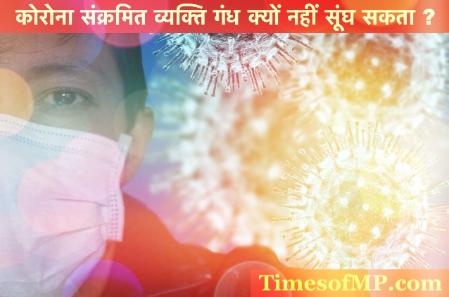 Health News in Hindi - Why can't a corona-infected person Smell
