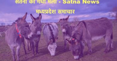Satna News, Donkey Fair in Satna