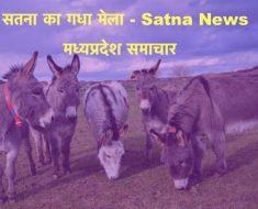 Donkey Fair in Satna News