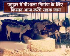 Birsinghpur News - Farmers Protest for Cow Shelter Construction demand - Satna News