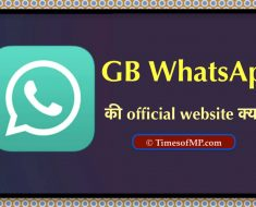 GB WhatsApp Website